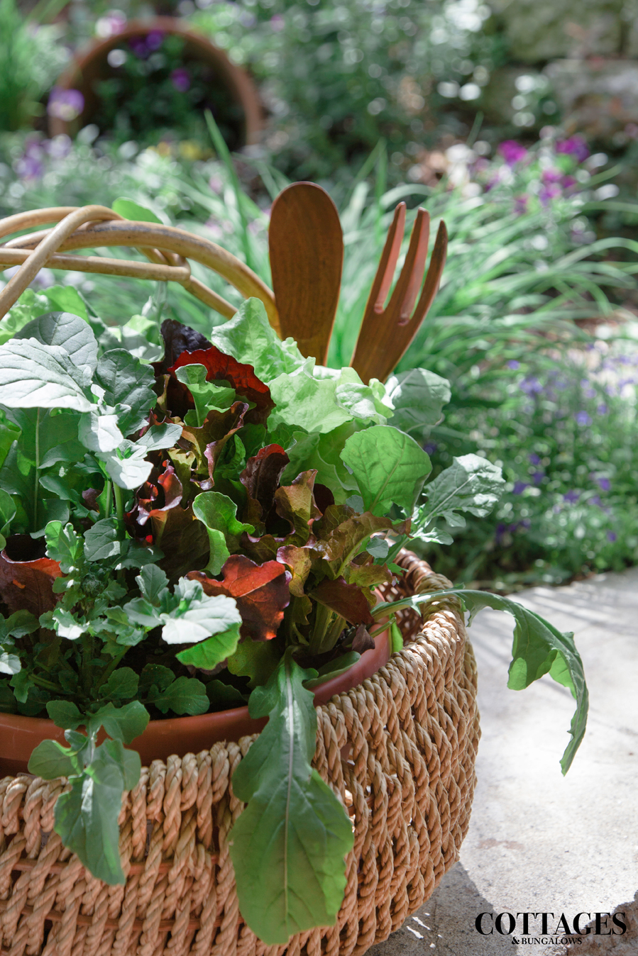 Do it yourself outdoor grow your own salad cottage style do it yourself outdoor grow your own salad cottage style decorating renovating and entertaining ideas for indoors and out solutioingenieria Images