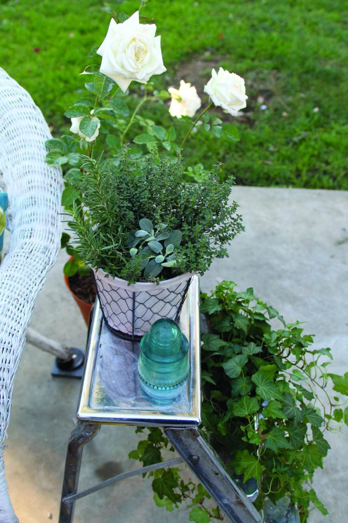 Cozy Garden Flower Pot