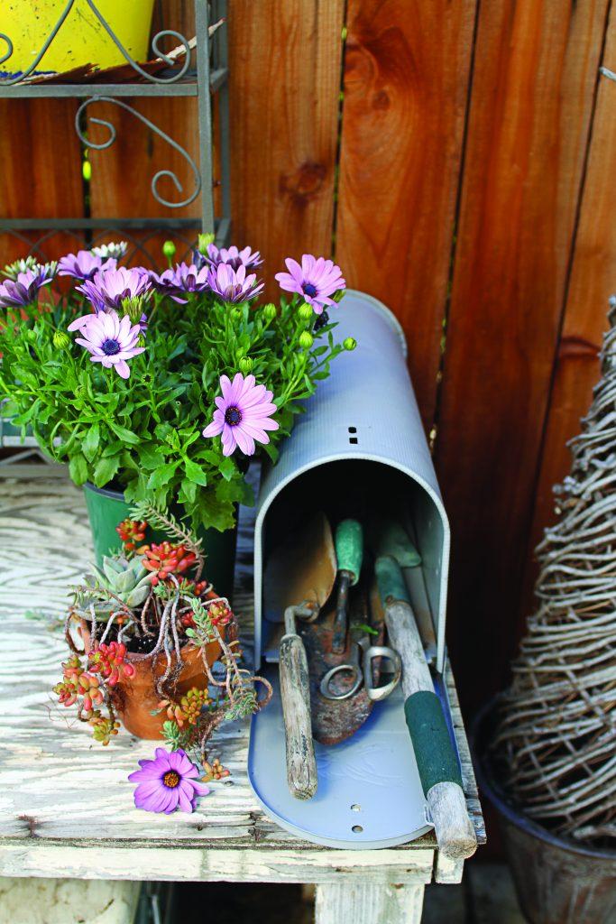 Cozy Garden Mailbox
