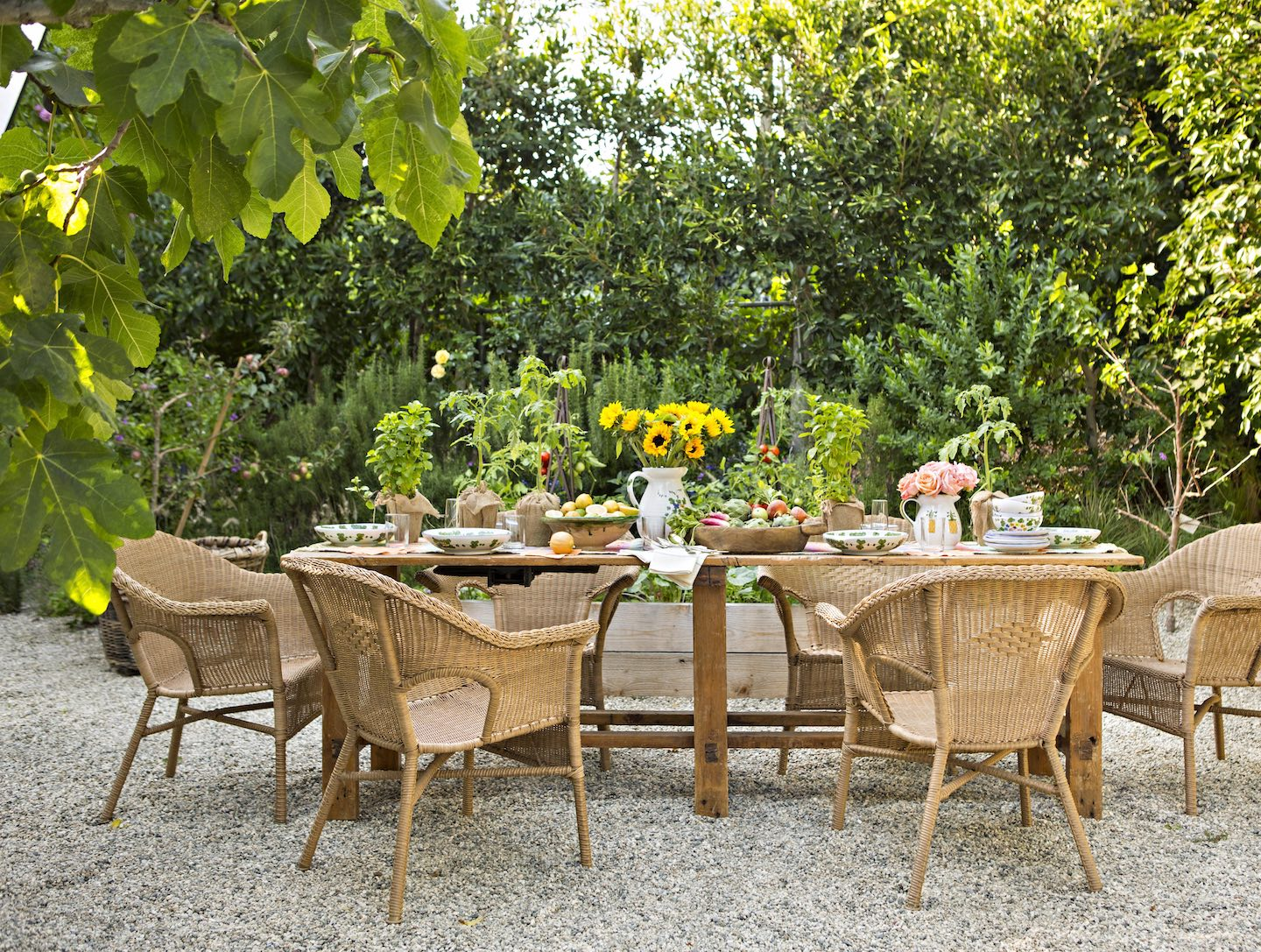 rattan garden chairs and a farm table in the vegetable garden