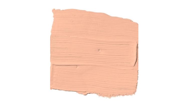 Peach Medley Paint Color