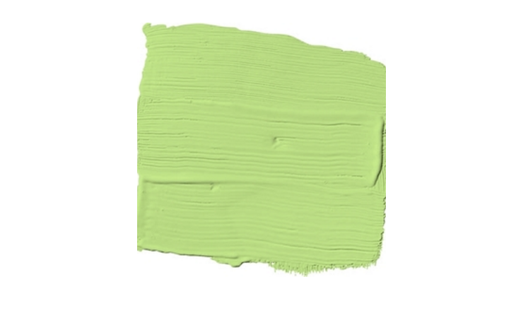 Spring Green Paint Color