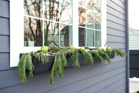 This window box, which sits beneath the kitchen window, is filled with greenery and apples.