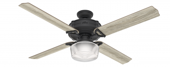 Product image: The Brunswick Fan from Hunter Fan Company.