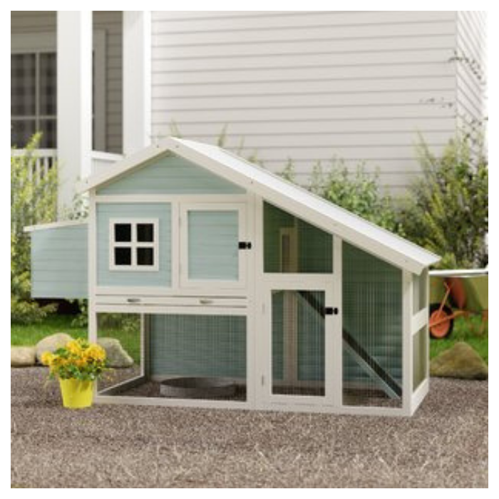 light blue and white trimmed outdoor chicken coop