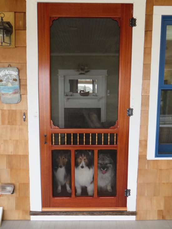 cottage charm door with double screen // vintage doors