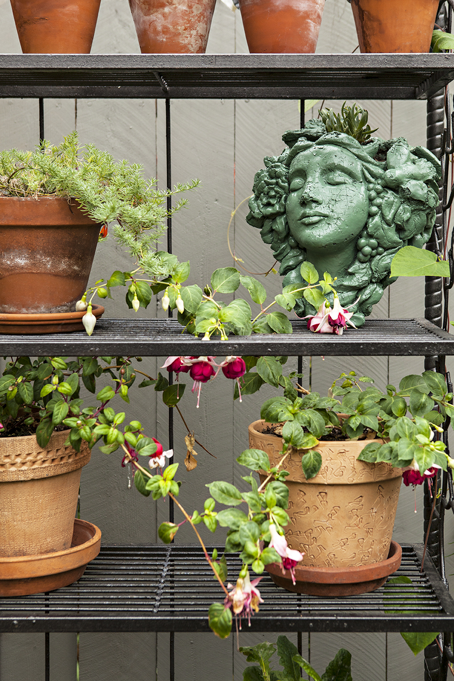 An outdoor shelf decorated with terra cotta pots in bloom.