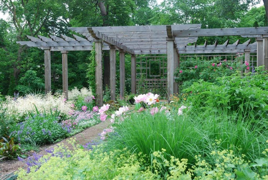 garden pergola with meadow flowers