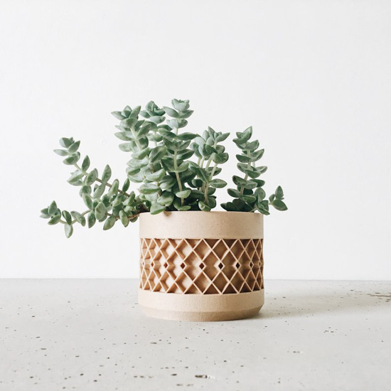 Wooden pot with hand-crafted detail filled with a small green succulent.