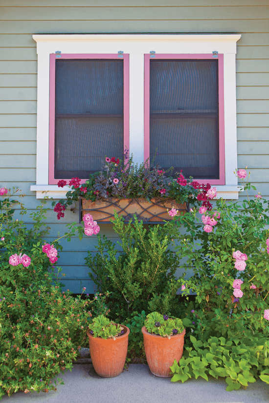 victorian window with pink painted trim