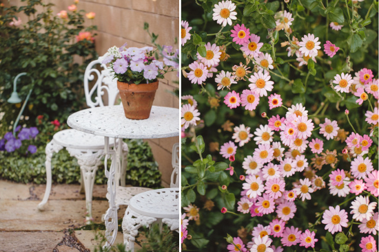 Out door white bistro set and charming light pink chrysanthemums.