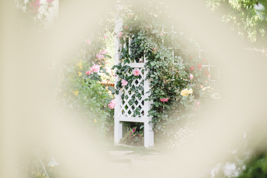 Peak through a garden gate to roses growing up a latticed arch.
