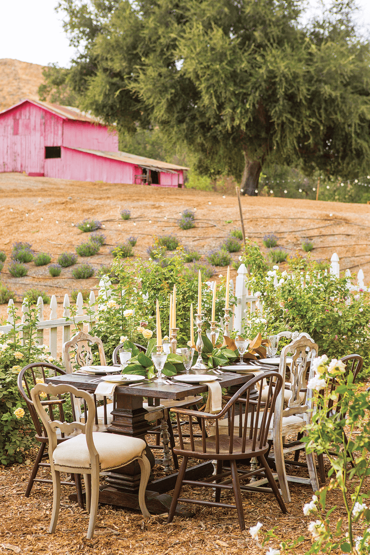 A rustic farmhouse table set for wedding guests in the midst of a rose garden with a red barn in the background.