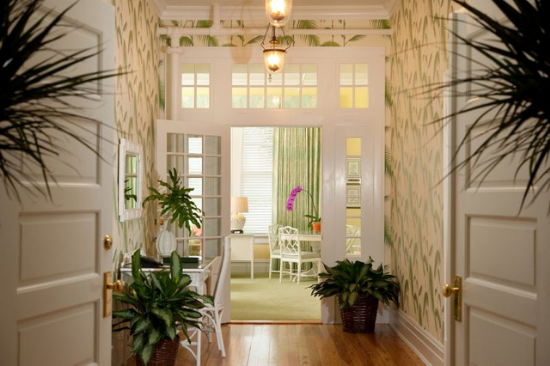 View down a wallpapered hallway with well-placed indoor plants and open and welcoming white doors.