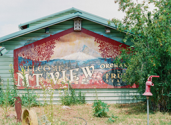 A rustic green farmhouse building with a giant sign welcoming guests to Mnt. View Orchards.