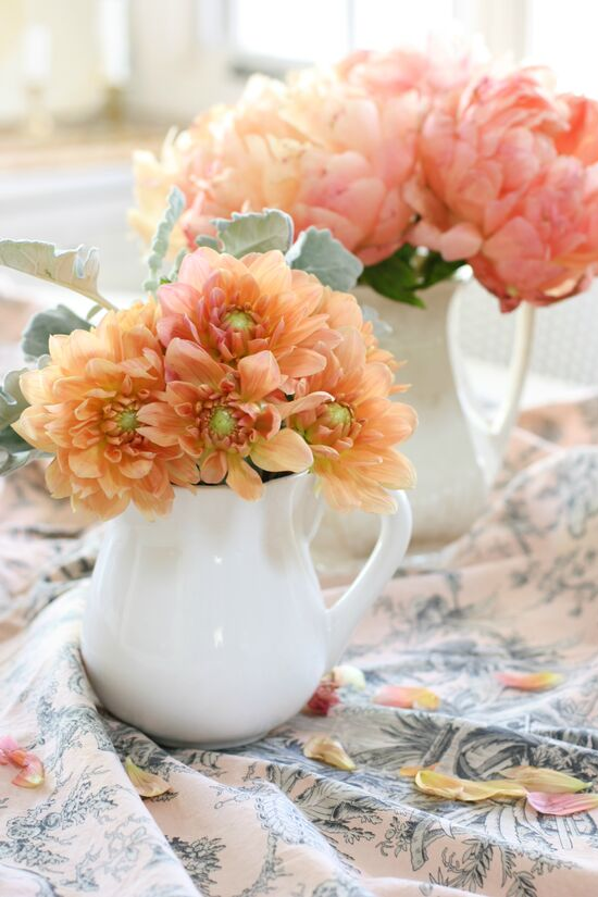 A pair of white small pitchers, in the front, peach colored dahlias and in the rear pink peonies.