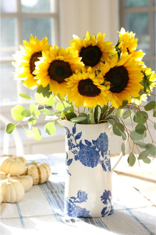 An arrangement of large sunflowers In a tall blue and white vintage pitcher with small pumpkin displayed in the background.
