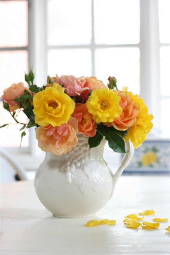 White, embossed pitcher filled with fresh garden roses in shades of pink, orange and yellow.