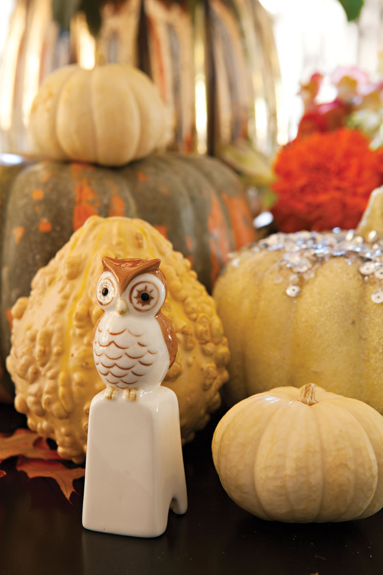 Various pumpkins and gourds create a centerpiece around a small vintage owl.