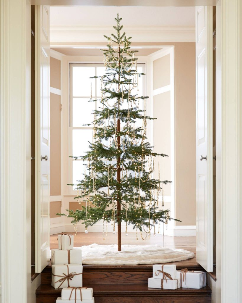 Simple tree in the middle of an elegant doorway