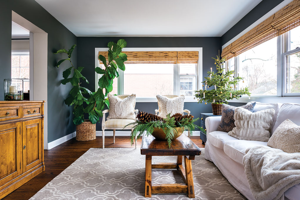 Two large windows let in bright light to this cozy living room with dark walls and light furniture and a bright green fiddle leaf fig tree in the corner.