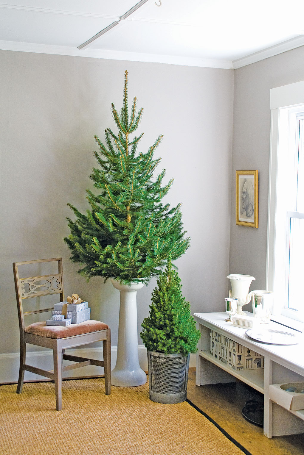 Corner of a room with light gray walls and white trim displaying bare Christmas trees as a pop of bright green decor.