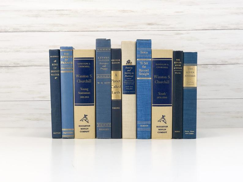 blue home decor decorative book set