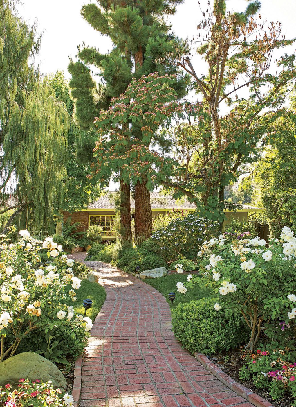 Brick walkway up to a California cottage through lush green garden and mature trees.