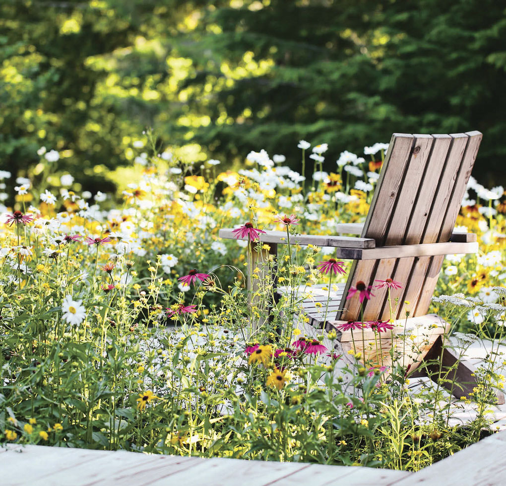 Rustic wooden Adirondack chair surrounded by a field of wildflowers.