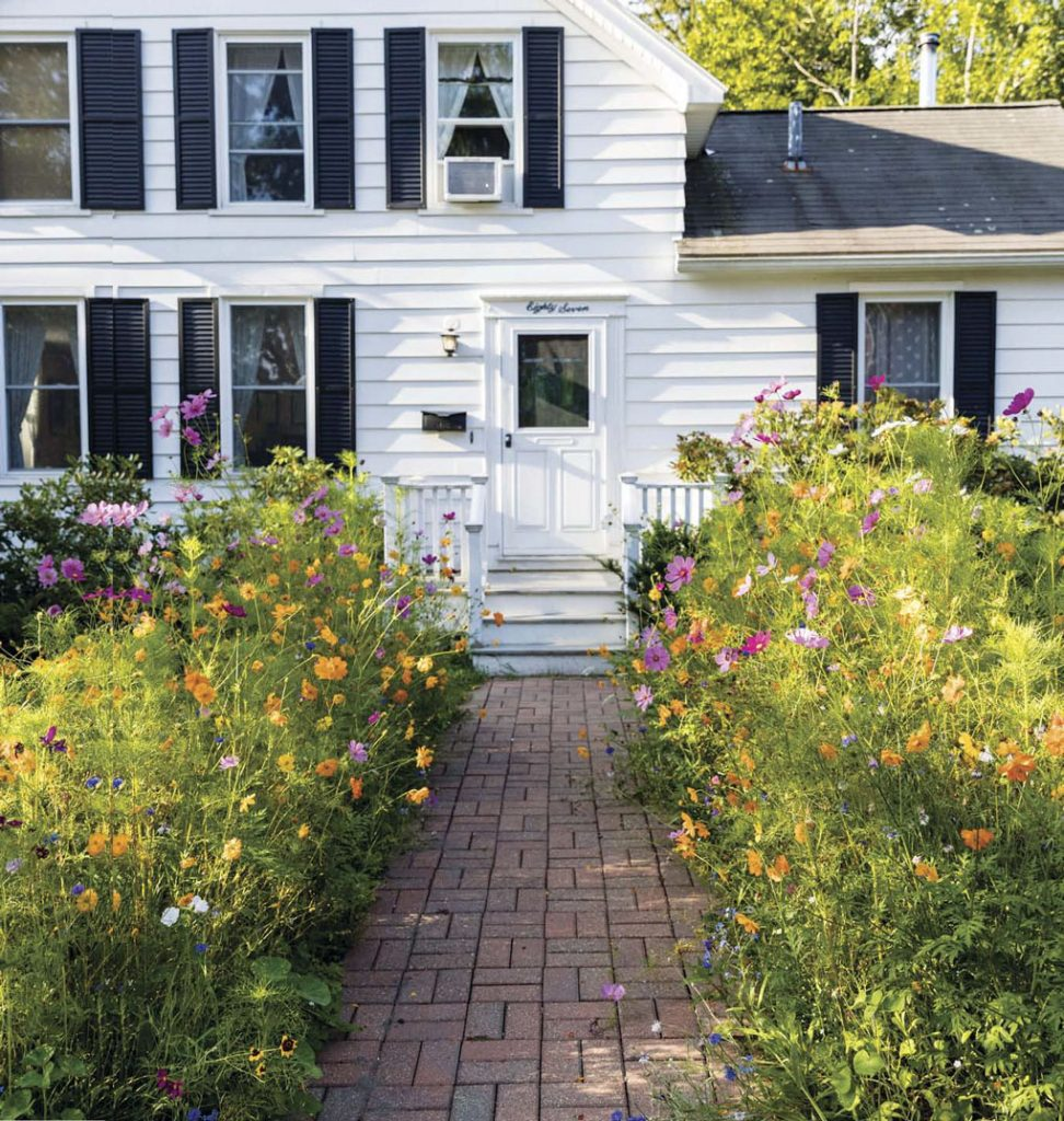 Exterior shot of a white home with wood siding and navy blue shudders, a brick path surrounded by wildflowers that leads to the front door.