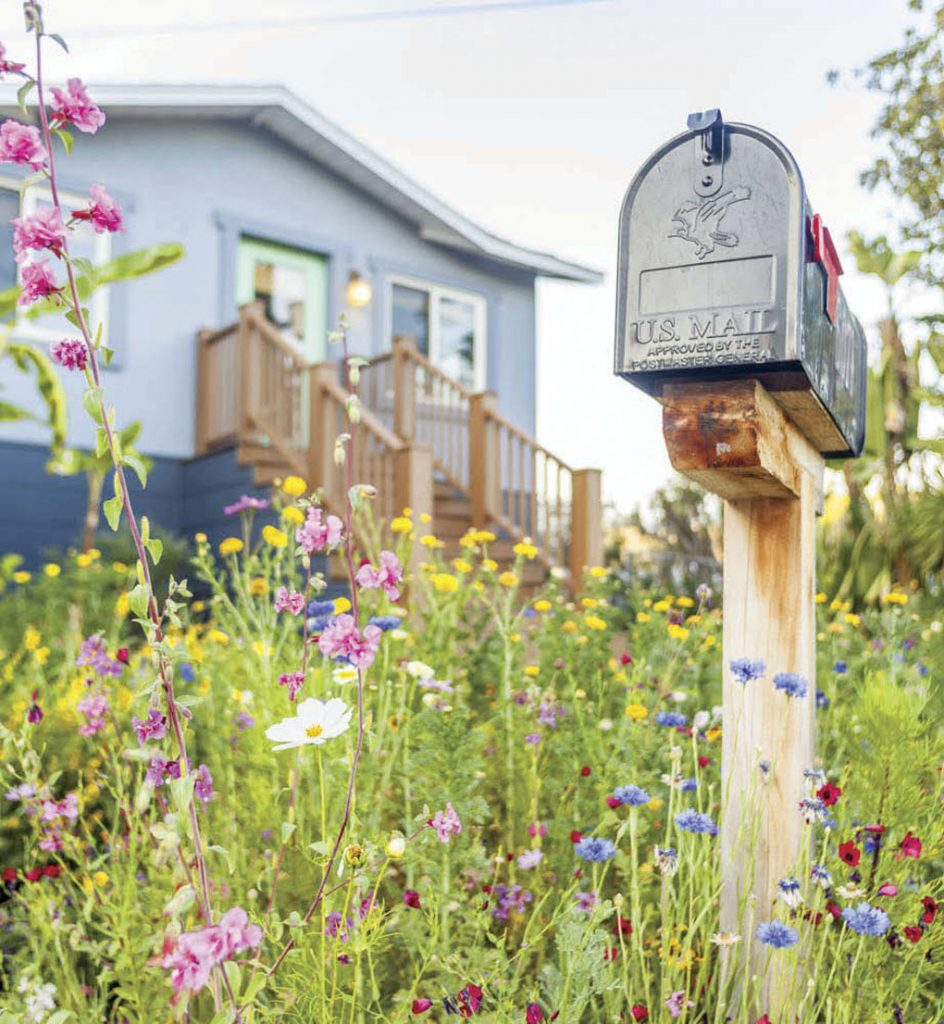 Wildflowers surrounding a rustic wood post and metal mailbox and beyond it a front railing to a home.