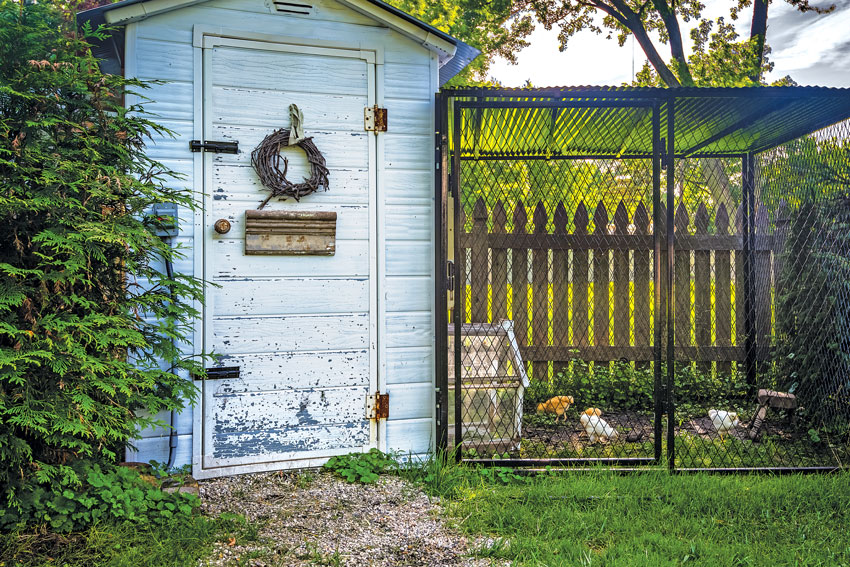 Chicken caging area outdoors of a cozy country cottage